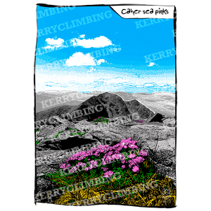 Kerry Climbing Caher Sea Pinks poster
