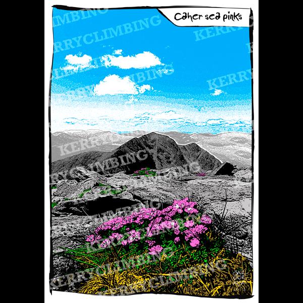 Kerry Climbing Caher Sea Pinks poster