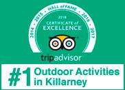 Trip advisor Award of Excellence