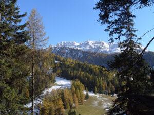 Alto Adige area of Northern Italy